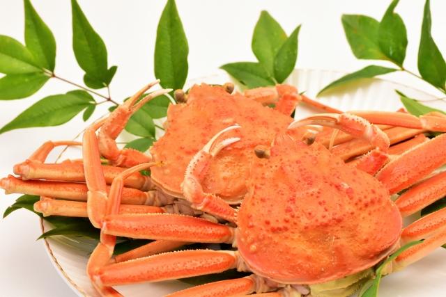 ブランド蟹で有名なズワイガニ