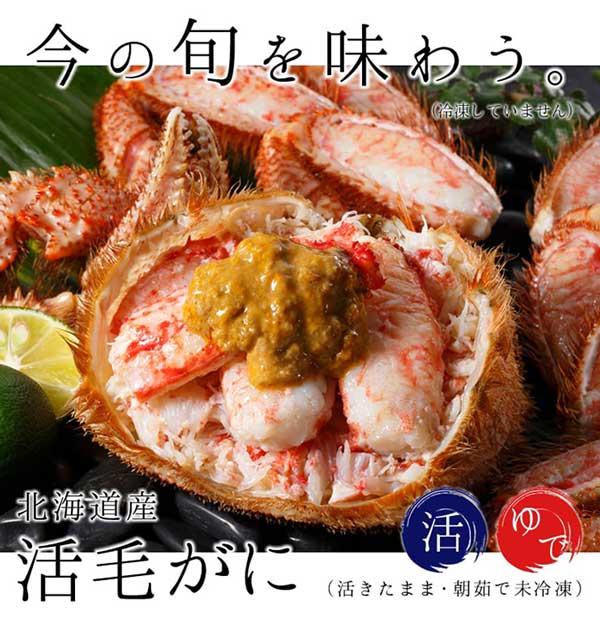 北海道北釧水産No.1人気商品 北海道産の「活毛ガニ」